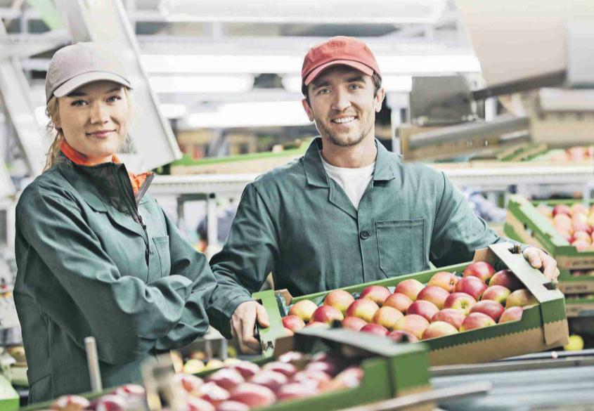 ¿Es Chile una potencia alimentaria?
