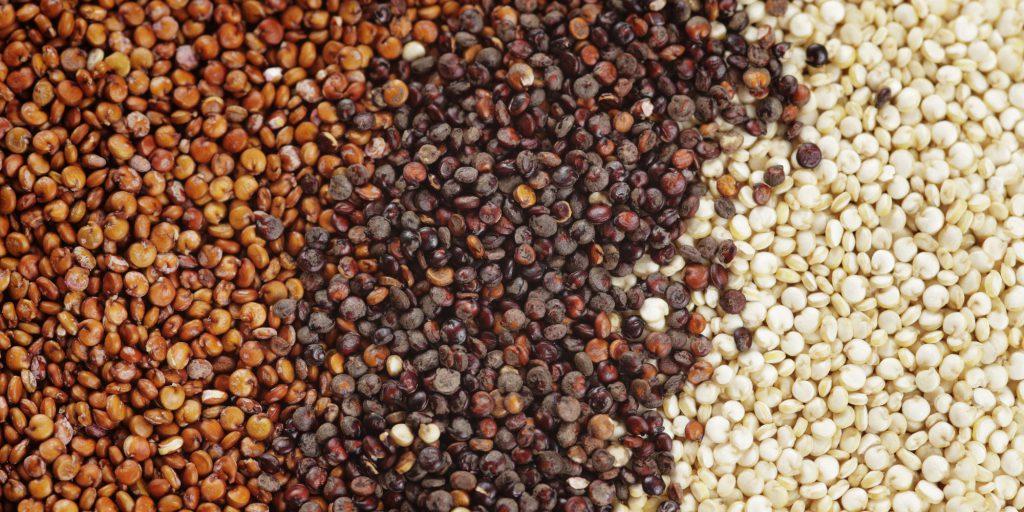 Quinoa, con un potencial no desarrollado