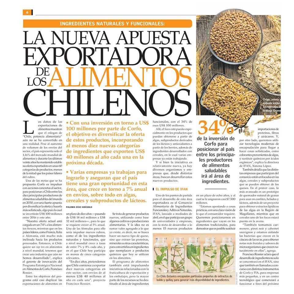 La nueva apuesta exportadora de los alimentos chilenos