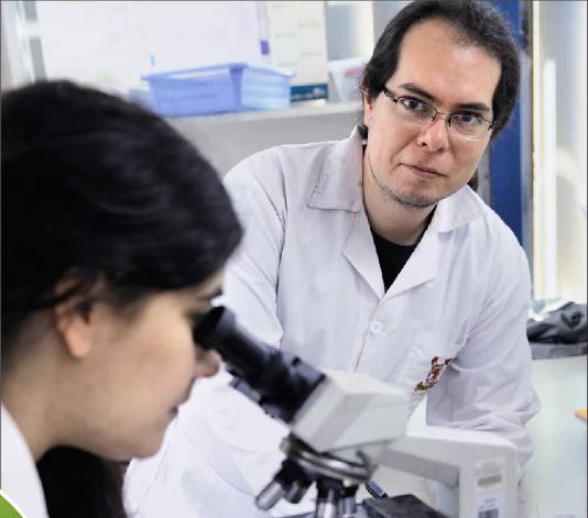 Bioquímico descubrió que el maqui elimina 80 por ciento de células de cáncer de endometrio